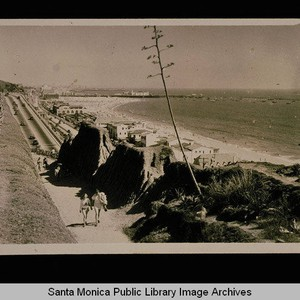 Path through the bluffs, Palisades Park, Santa Monica Bay and Pier