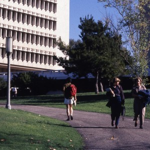 Groups of students around campus.