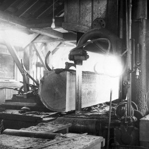 Inside the Saw Mill
