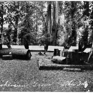 Camp fire, Bohemian Grove, California