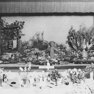 Display at Minerva Club flower show, 1937