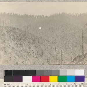Pacific Lumber Company, Freshwater Creek, Humboldt County, California. Showing one and two ...