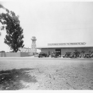Fig - Stockton: California Kadota Fig Products Inc., [Traction Line and Linden ...