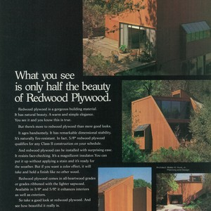 """What you see is only half the beauty of Redwood Plywood."""