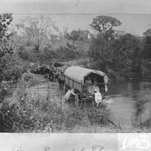 Ox-drawn wagon crossing a river, Valdezia, South Africa, November 1886