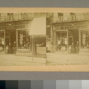 Chinese Store, San Francisco, Cal [California]. American Views