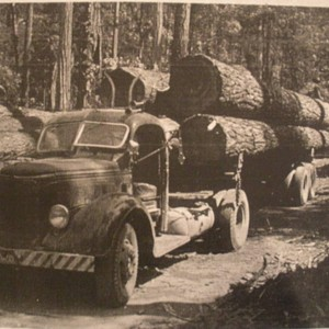 Truck loaded with cut redwoods, Mendocino County