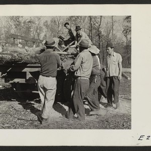 Loading cut timber for hauling to the center operated sawmill. The land ...