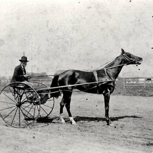 "Peter Amestoy with his horse ""sulky"", circa 1908"