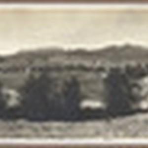 Hollywood from Olive Heights, 1905