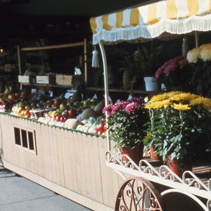 Flowers and Fruit Market Stand
