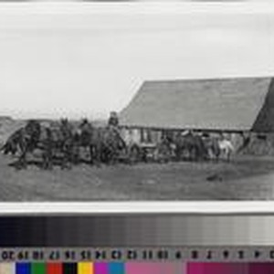 Farmhand with mule-team and wagon on the Phillips Ranch, Rolling Hills Estates
