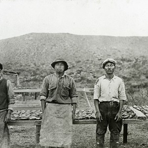 Three Japanese fishermen at the abalone camp #1 with drying racks in ...