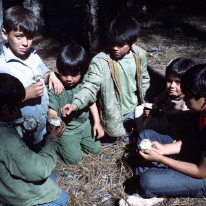 Group of unidentified children collecting mushrooms near Berry Creek in Butte County