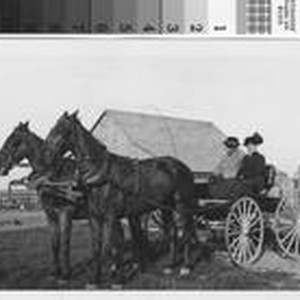 Harry F. Phillips and wife Mary Ann in horse-drawn buggy at the ...