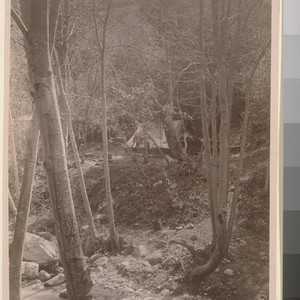 [Camp site, unidentified location.]--7852