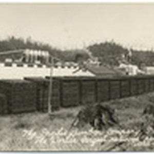 "The Pacific Lumber Company, Scotia, Cal. ""The world's largest redwood saw mill."" ..."