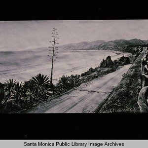 Santa Monica beach looking north from the California Incline with Century Plant