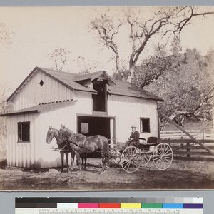 Stable and team (horses and carriage), Josephine Mine, Fresno County, California. [photographic ...