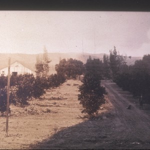 Launer home, taken from Central Ave. & Main St., 1905?