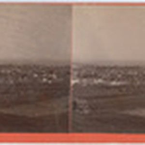"From ""The Mound"" viewpoint, grounds of Henry Meyrick, Esq."