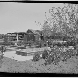 Benson, Ross, residence. Vegetable garden