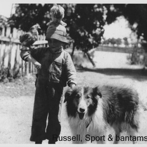Russell Nissen with dog Sport and two bantams, Petaluma, California, about 1917