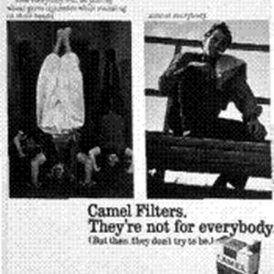 Camel Filters. They're not for everybody