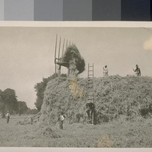 [Hay stack with farm laborers (including Japanese?).]