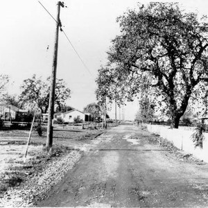 Looking west on Terry Road, Santa Rosa, California in 1967, from 1925 ...