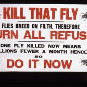 Kill that fly. Flies breed on filth, therefore burn all refuse. One ...