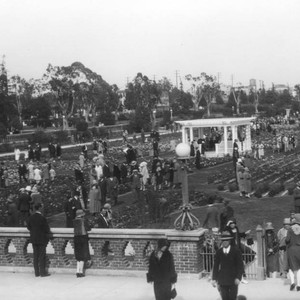 Rose garden at Exposition Park