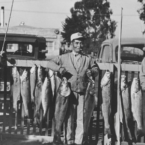 Stripe bass fishing in front of Harold Shimizu home, Guadalupe : 1935. ...