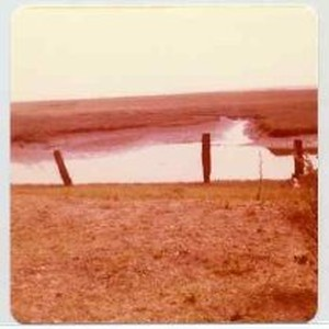 "Photographs of landscape of Bolinas Bay. ""Bolinas Lagoon, 8-77"""
