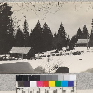 Whitaker's Forest 4-H Camp in April, 1929 with the commissary at the ...
