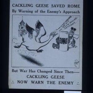 Cackling geese saved Rome by warning of the enemy's approach ... but ...