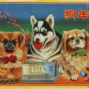 Lucky dog's year