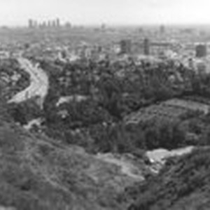 [View of Los Angeles from Mulholland Drive]