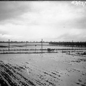 Flooded agricultural fields
