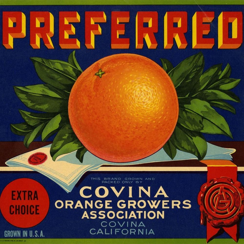 Covina California  Orange Citrus Fruit Crate Label Art Print Daisy Snkist