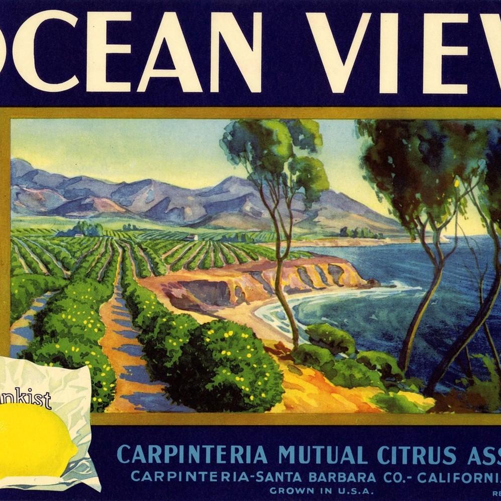 Carpinteria Brand Lemon Citrus Fruit Crate Label Art Print