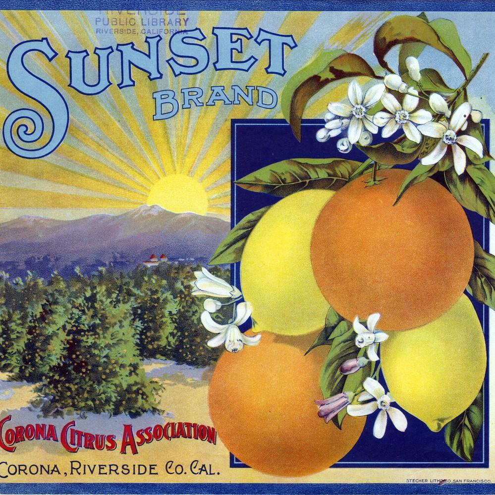 Corona Riverside County Maverick Cow Lemon Citrus Fruit Crate Label Art Print